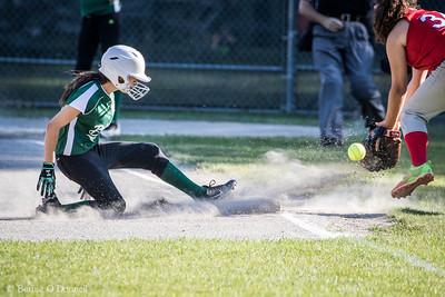 6/26/2017 Bernie O'Donnell |    Canon EOS 7D Mark II; EF100-400mm f/4.5-5.6L IS II USM 400mm; ISO 800; 1/1000; f/5.6