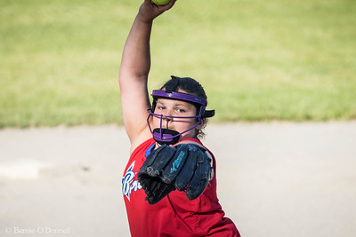 6/26/2017 Bernie O'Donnell |    Canon EOS 7D Mark II; EF100-400mm f/4.5-5.6L IS II USM 400mm; ISO 800; 1/1000; f/7