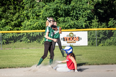 6/26/2017 Bernie O'Donnell |    Canon EOS 7D Mark II; EF100-400mm f/4.5-5.6L IS II USM 188mm; ISO 800; 1/1000; f/8