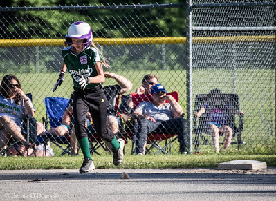 6/26/2017 Bernie O'Donnell |    Canon EOS 7D Mark II; EF100-400mm f/4.5-5.6L IS II USM 400mm; ISO 800; 1/1000; f/9