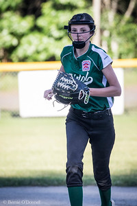 6/26/2017 Bernie O'Donnell |    Canon EOS 7D Mark II; EF100-400mm f/4.5-5.6L IS II USM 371mm; ISO 800; 1/1000; f/6.3