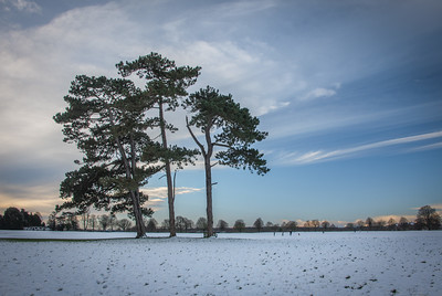 The downs in snow, Bristol