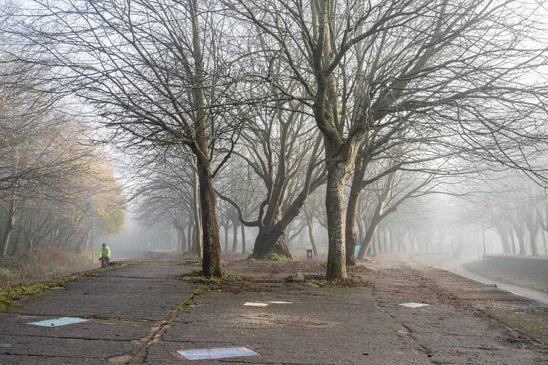 Misty morning on the Bristol and Bath Railway Path