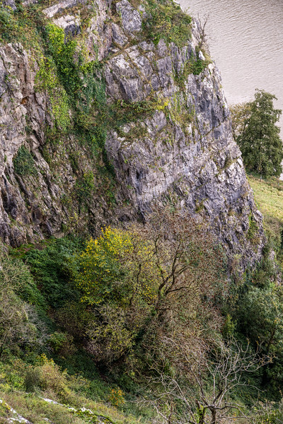 Autumn in the Avon Gorge