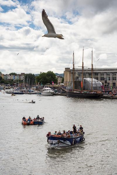 Seagull over Bristol Harbour