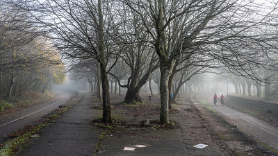 Mist on the Bristol and Bath Railway Path