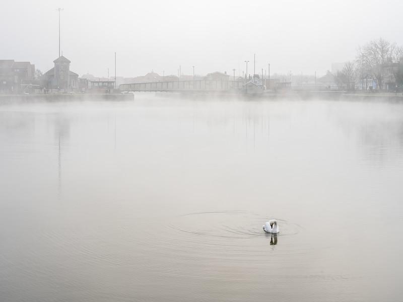 Cumberland Basin in fog