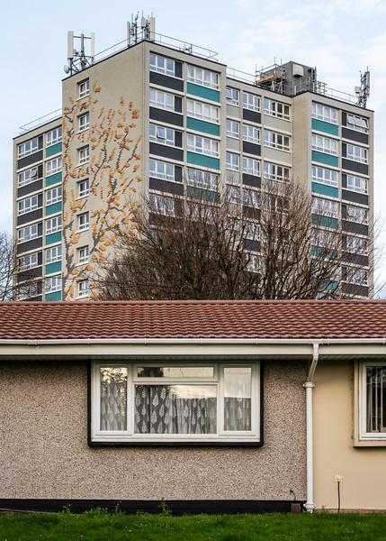 Shirehampton housing