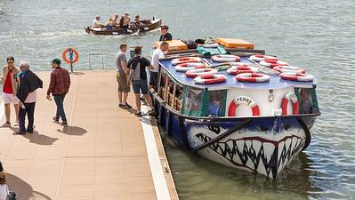 Shark ferry