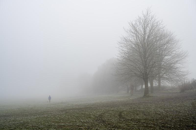 Stoke Park in fog