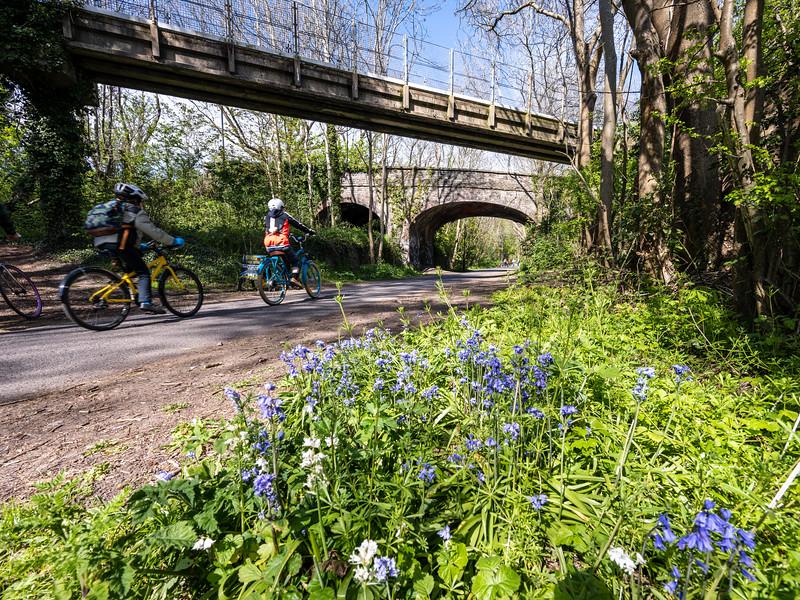 Springtime on the Bristol and Bath Railway Path