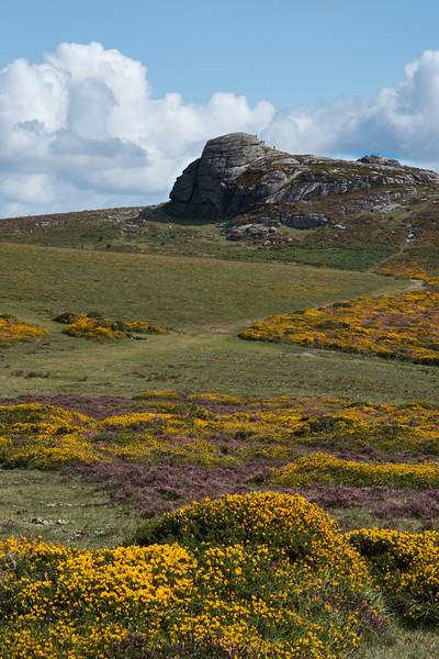 Haytor seen from Saddle Tor