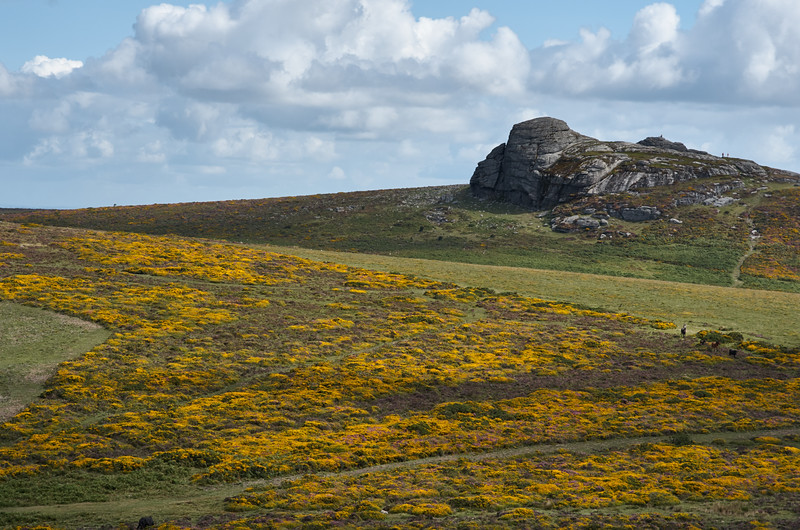 Haytor seen from Saddle Tor
