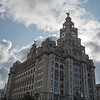 The Liver Building
