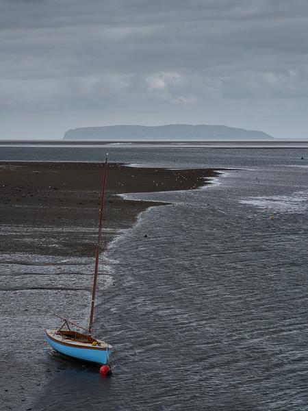 Dingey at Low Tide