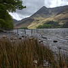 Reeds and Fence, Buttermere