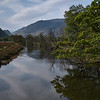 Derwent river
