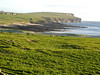 Looking toward Marwick Head from Birsay