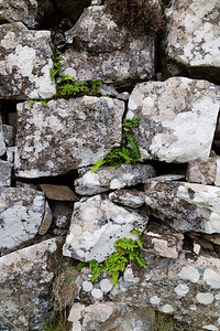 Walls of  Dun Fiadhairt, Skye