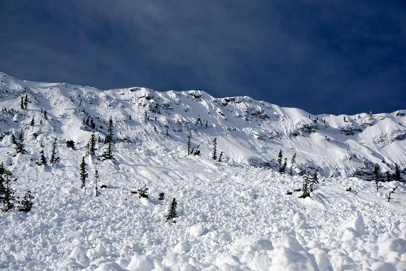 Fernie Alpine Resort, British Columbia