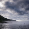 Slamon Fishing in the Mist, Quadra Island