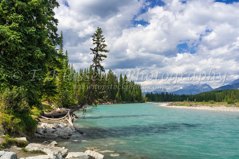 A scenic creek in Kootneay National Park, British Columbia, Canada.
