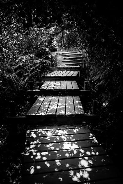 Mottled Walkway