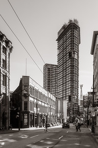 Woodwards 43 (W43)