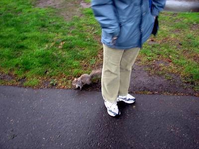 Squirrel running around Sophia's feet