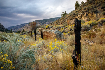 Burnt Fence Among the Sage Bushes