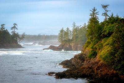 Misty Coastline