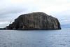 Bass_Rock_Scotland_2019_British_Isles_0021