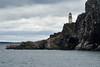 Bass_Rock_Scotland_2019_British_Isles_0014