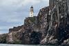 Bass_Rock_Scotland_2019_British_Isles_0002
