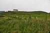 Fair_Isle_Shetland_Islands_Scotland_2019_British_Isles_0003