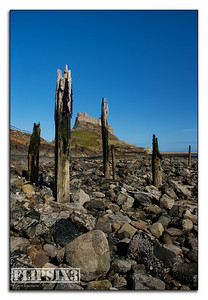 Holy Island Castle, through wooden pilings on the rocky beach