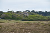 Tresco_Scilly_Isles_England_2019_British_Isles_0002