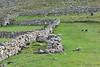 Saint Kilda_Scotland_2019_British_Isles_0002