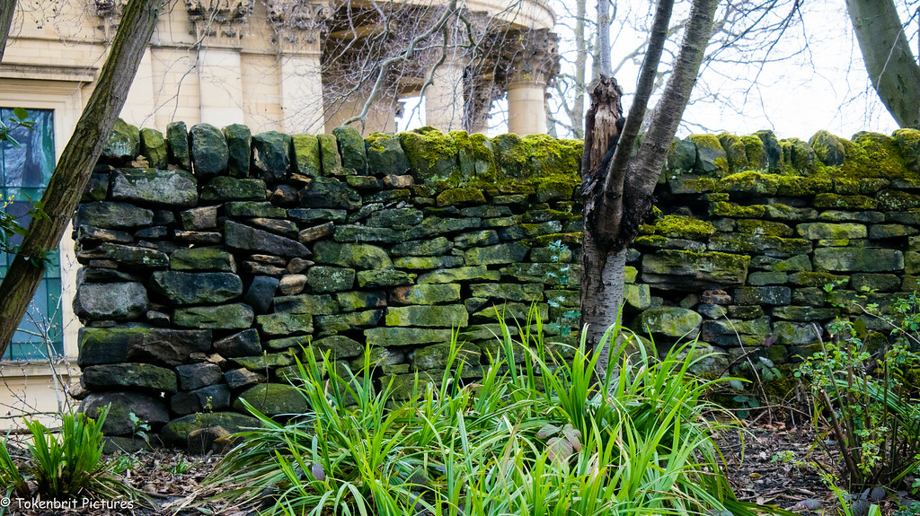 Art of dry stone wall Saltaire Yorkshire LR-0649
