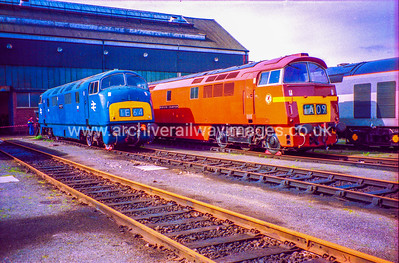 D821 Greyhound & D1015 Western Champion 19/3/94 Old Oak Common Depot D821 Withdrawn 12/72 LA	Now Preserved / Private Owner as at 13/10/17 D1015 Withdrawn 12/76 LA	Now Preserved / Private Owner as at 13/10/17