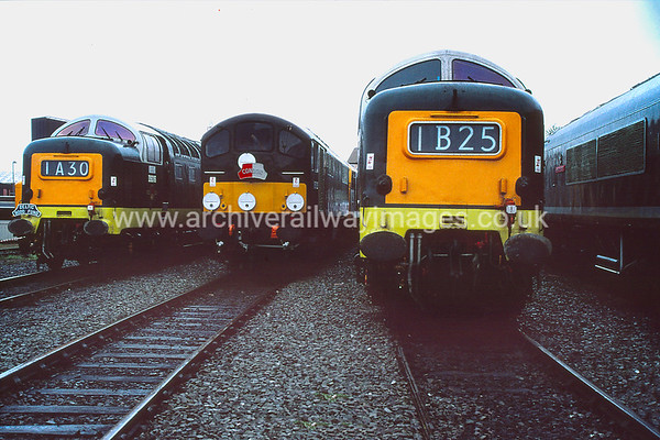 D9016 Gordon Highlander + D5705 & D9000 Royal Scots Grey 6/9/92 Leicester Depot D9016 Withdrawn YK 30/12/81    D5705  Withdrawn D10 9/68    D9000   Withdrawn 1/82  YK     All Now Privately Owned/Preserved as at 29/10/17