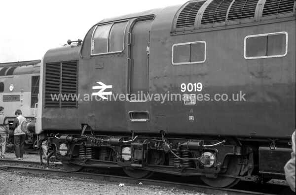9019 Royal Highlander Fusillier 5/6/88 Coalville Depot Withdrawn 2/81 YK   Now Preserved / Private Owner as at 6/8/17