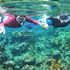 Fran and Dave Cleven at Long Bay... great snorkeling