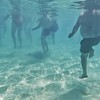 """The """"exercisers"""" under water... they have no clue...."""
