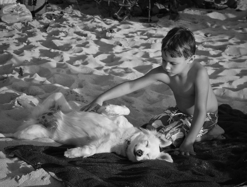 """Gorda2012-107 -- """"Pearl"""" a happy and sociable beach dog becomes everyone's pet -- she belongs to the owners of Guavaberry.<br /> Many late afternoons when I would see the sharp contrast created by the setting sun -- I would put my camera in the BW mode to create these kinds of shots."""