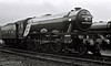 4472 Flying Scotsman, Stockport Edgeley shed,  16 March 1968