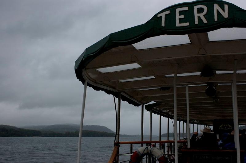 Tern, Lake Windermere, Tues 23 August 2005.