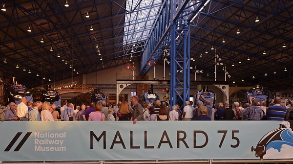 Welcome to Mallard 75!  National Railway Museum York, 5 July 2013.  To celebrate the 75th anniversary of the 126mph sprint by Nigel Gresley's A4 Pacific Mallard in 1938, the NRM reunited the six surviving A4s at York, including two from North America.  Here they are, in the only photo I managed with all six locos.