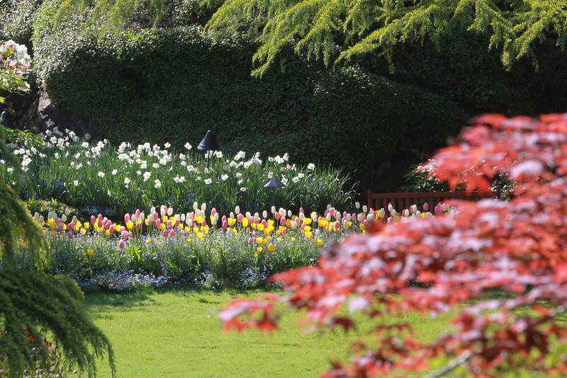 Buchart Gardens