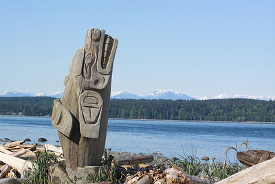 A First Nation carving of a killer whale seems to be escaping the driftwood on the shore of the Strait of Georgia
